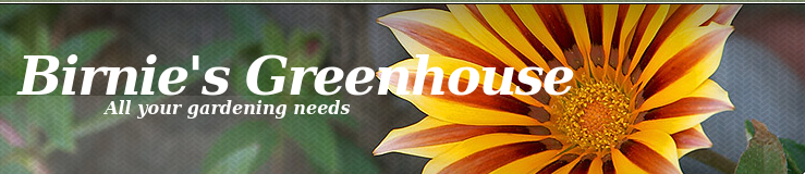 Featured Clients: Birnie's Greenhouse
